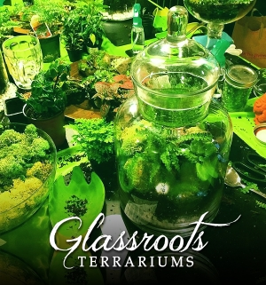 DIY Terrariums Workshop